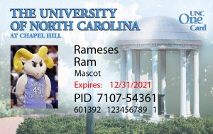 Sample One Card for Rameses Ram