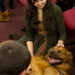 Bear lies on his side and a student pets him.